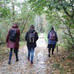 herfst zoektocht naar wilde planten